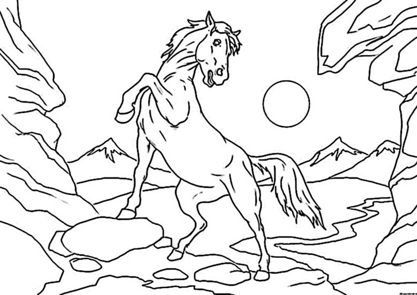 pferd 12 ausmalbilder
