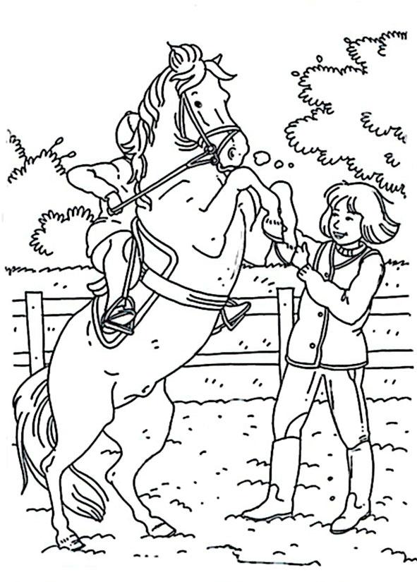 pferde malvorlagen 13